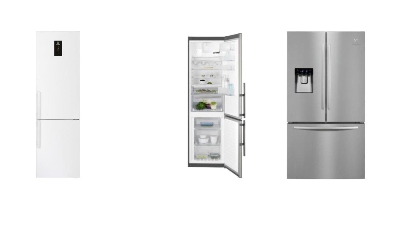 ТОП 4 лучших двухкамерных холодильников Electrolux