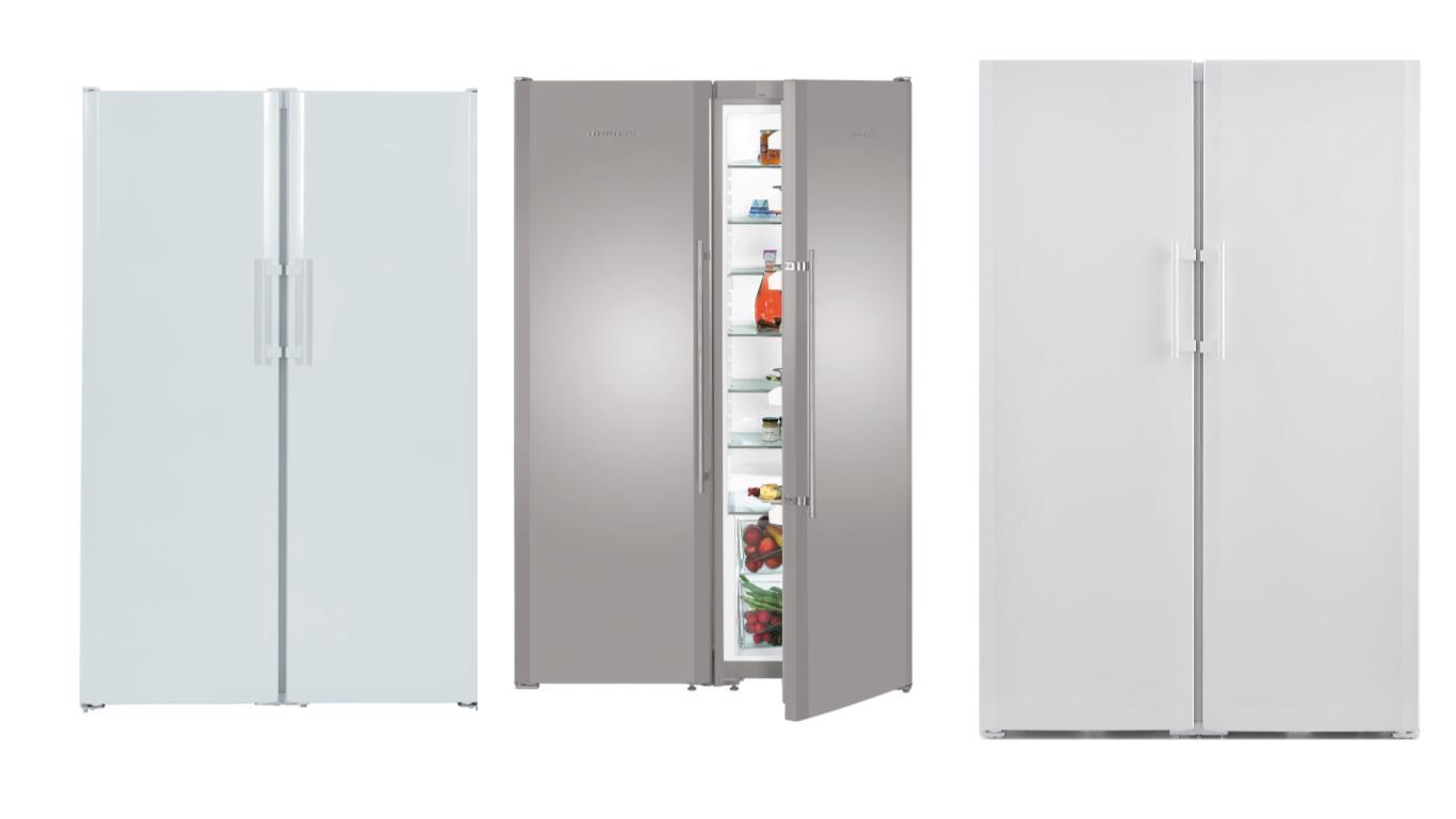 Выбор лучших моделей широких двухдверных холодильников