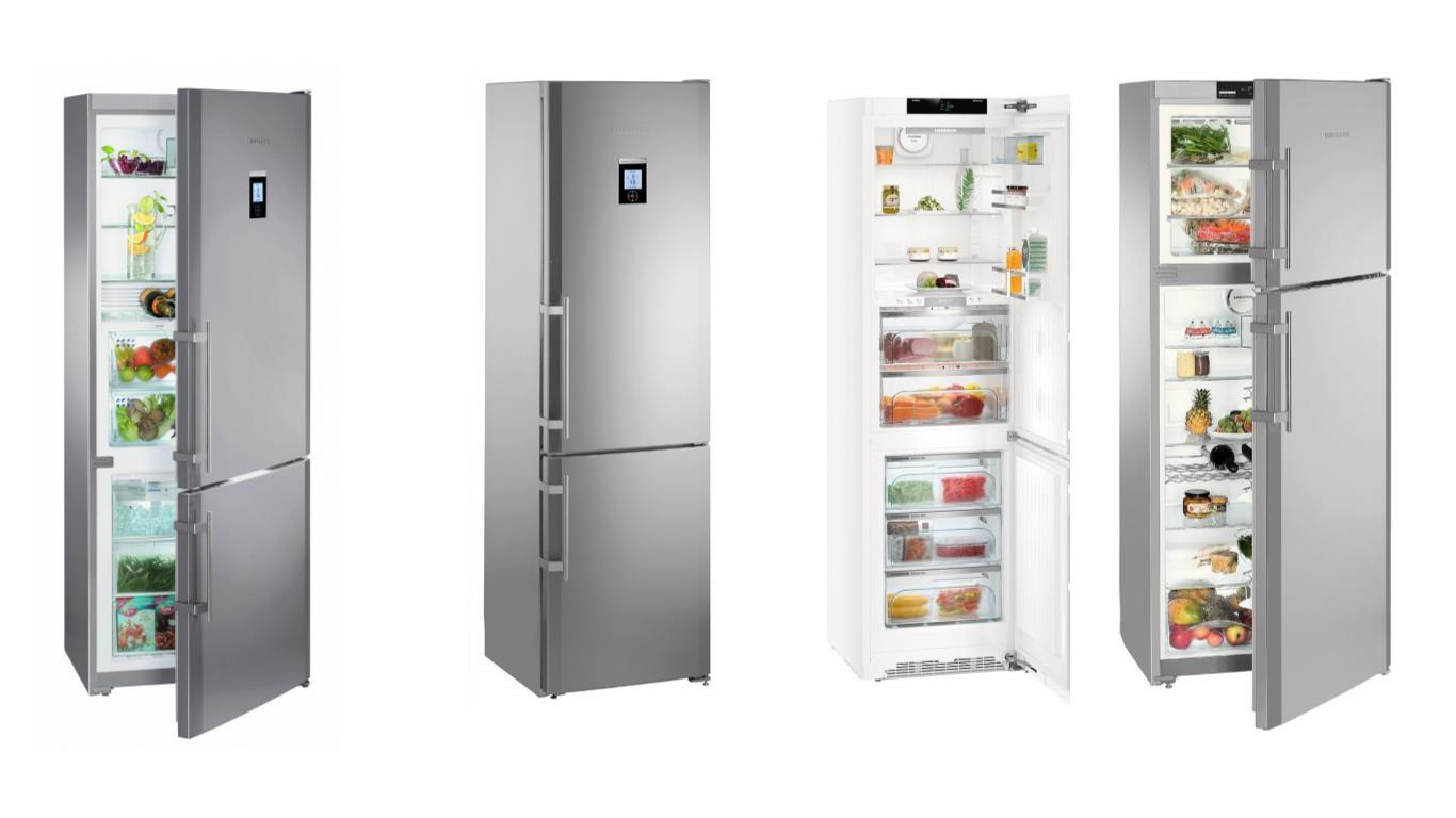 Секреты выбора лучшего холодильника Либхер Ноу Фрост